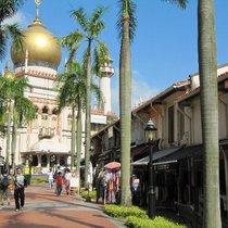 シンガポールを撮ろう!!フォトジェニックツアー