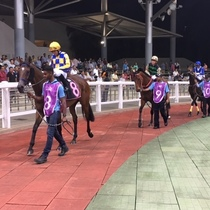 シンガポール競馬観戦ツアー