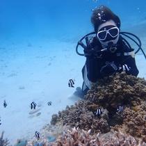 初心者にオススメ! 宮古島の海でビーチ体験ダイビング by マナファクトリー