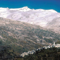 専用車で行く マラガ発グラナダ着 ~生ハムの産地~ アルプハラの白い村 秘境カピレイラを訪ねる