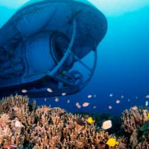 【ハワイ島/コナ】アトランティス潜水艦ツアー ハワイの海中探検