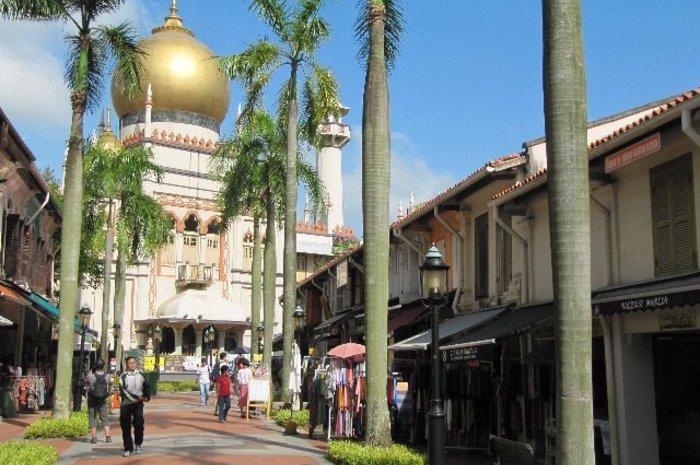 シンガポールを撮ろう! ! フォトジェニックツアー