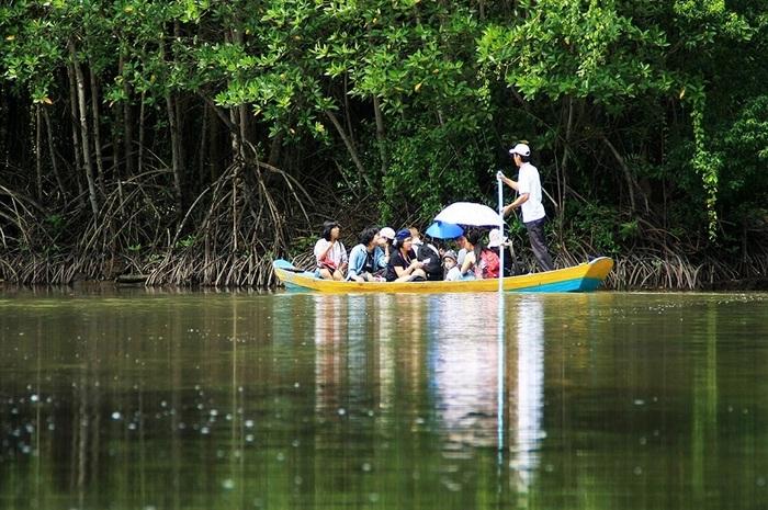 大自然 + ワニ釣りを楽しめる神秘のマングローブ林 カンザーツアー [車内WIFI付き可/グループ]