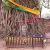 バンコク市内観光 + アユタヤ (バンコ...の写真