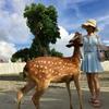 墾丁チャーター観光プラン [アレンジ自由...の写真
