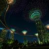 煌めき シンガポールの夜景と2階建てオー...の写真