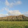 オアフ島巡り 1日で周る見所満載のサーク...の写真