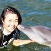 バリ島でイルカとふれあい一緒に泳ぐオプシ...の写真