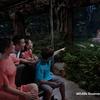 夕方発 ナイトサファリ観光の写真