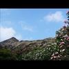 ハワイの自然をもっと感じたい方にお薦め ...の写真