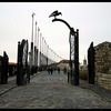 ブダペスト王宮の丘 半日ウォーキングツア...の写真