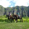 大人気クアロア・ランチで乗馬体験♪太古の...の写真