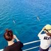 完全プライベート★グアムの海でオーシャン...の写真