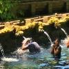 5つの世界遺産巡り!バリ島大満喫1日観光の写真