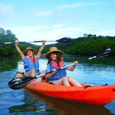 沖縄のマングローブをシーカヤックで進もう...の写真