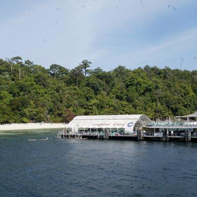 コーラルガーデンパヤ島 (A) シュノー...の写真