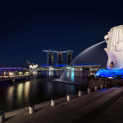 煌めき!シンガポールの夜景と2階建てオー...の写真