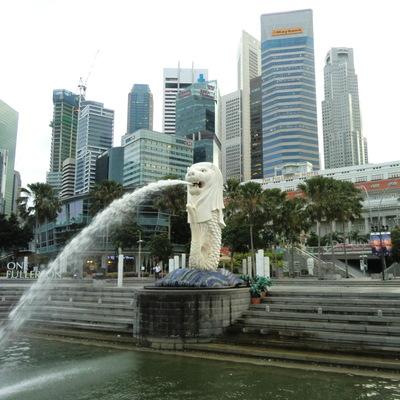シンガポール観光ダイジェスト 選べるロー...の写真
