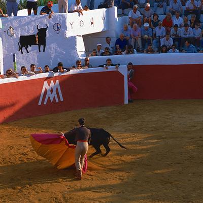 マドリッド闘牛観戦 闘牛好きのアシスタン...の写真