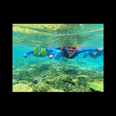 青の洞窟スーパーツアー! グラスボート海...の写真