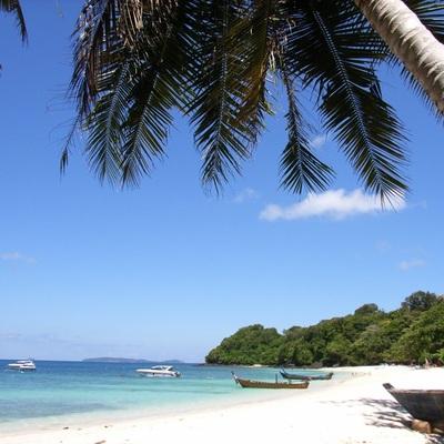コーラル島1日観光の写真