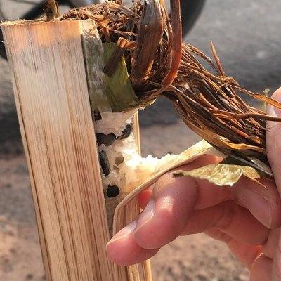 超マニアック ただ竹ご飯を買いに行くだけ...の写真
