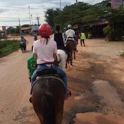 乗馬レッスンツアーの写真