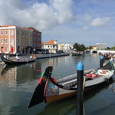 専用車で 運河の町アヴェイロとコインブラ...の写真