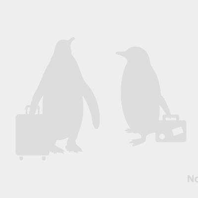 ボストン・ローガン空港送迎 日本語(混乗...の写真