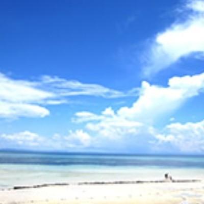 セスナ機で行く バンタヤン島ビーチランチの写真