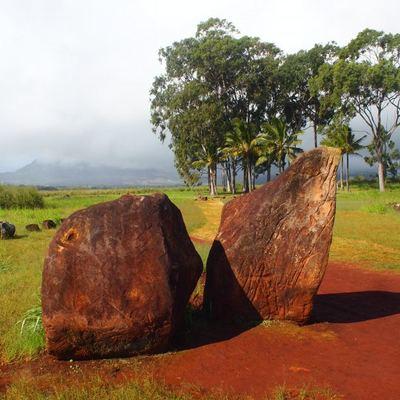 ハワイの大人気パワースポット巡り♪ハレイ...の写真