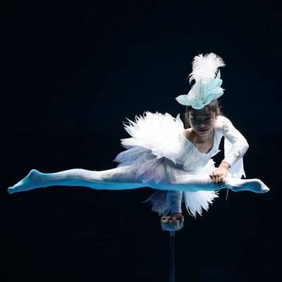 上海雑技団 電子チケット予約(上海商城劇...の写真