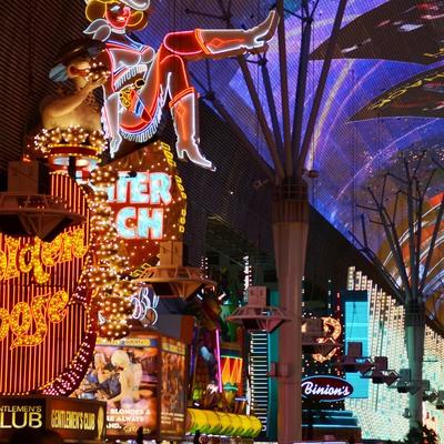 ラスベガスの夜を満喫 カメラ片手に王道コ...の写真