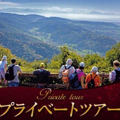 【プライベートツアー】日本語ガイドと歩く...の写真