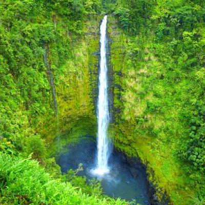 ハワイ島名所とパワースポットを巡る 世界...の写真