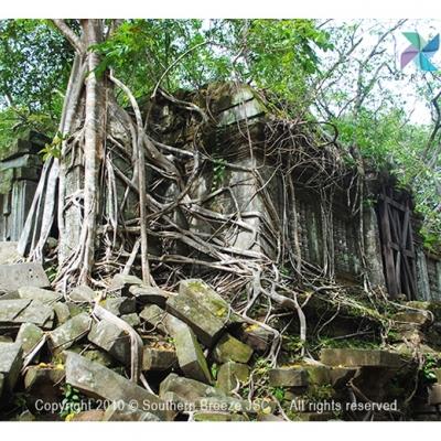 人気名所巡りツアー:ベンメリア遺跡 ラン...の写真