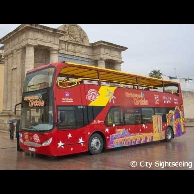 乗降自由バス1日券(コルドバ市内)の写真