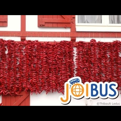【JOIBUS】ボルドー発サン・セバスチ...の写真