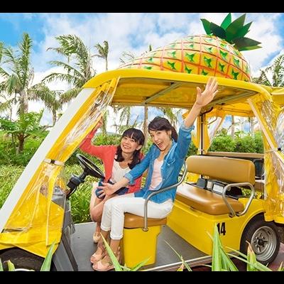 沖縄美ら海水族館と古宇利島・万座毛・ ナ...の写真