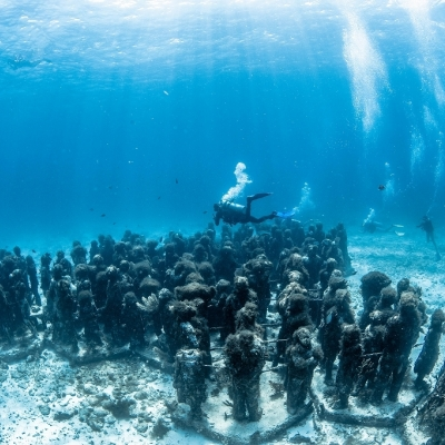 水中美術館体験ダイビングツアーの写真