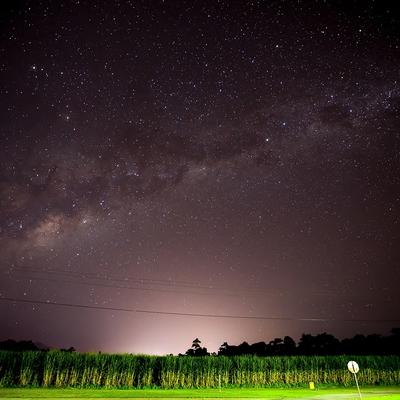 満天の星空とワイルドアニマル探索ツアーの写真