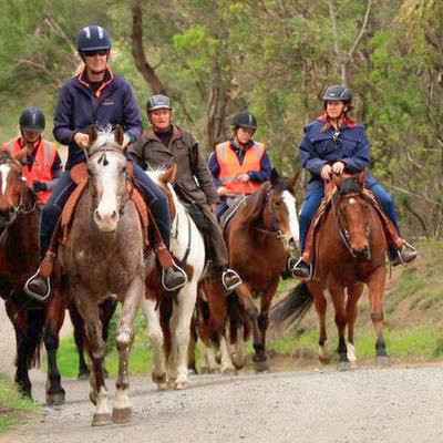 モーニントン半島乗馬体験 & 天然温泉ペ...の写真