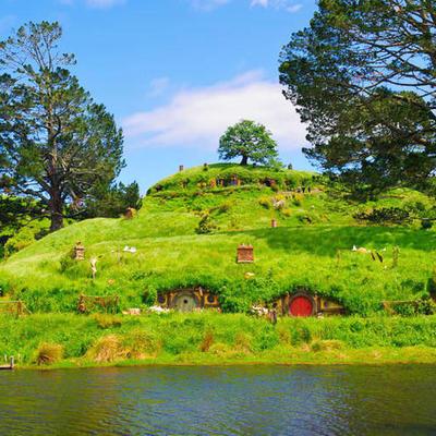 オークランド発 土ボタルワイトモ洞窟 &...の写真
