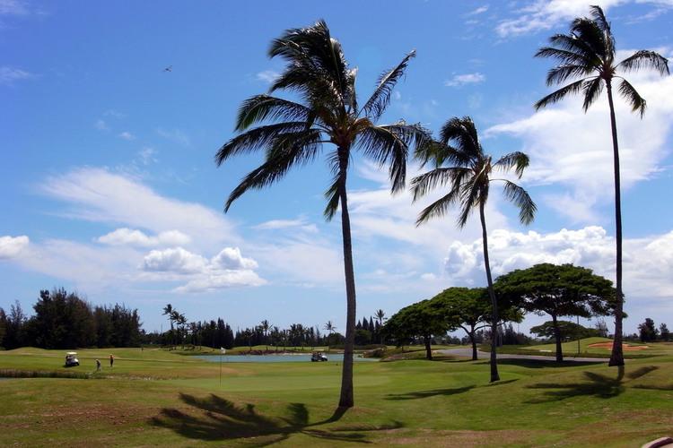 中級者向け 『ハワイプリンス ゴルフクラ...の写真