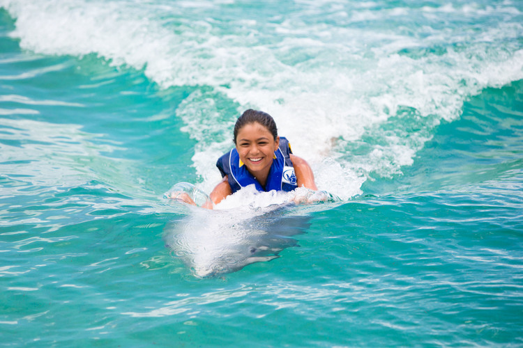 愛らしいイルカと一緒に泳ぐ癒やし効果満点...の写真