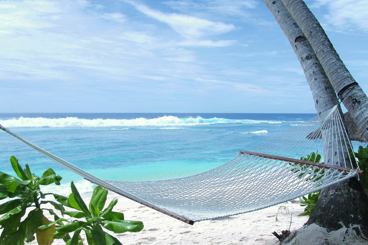綺麗なプライベートビーチでのんびり海水浴...の写真
