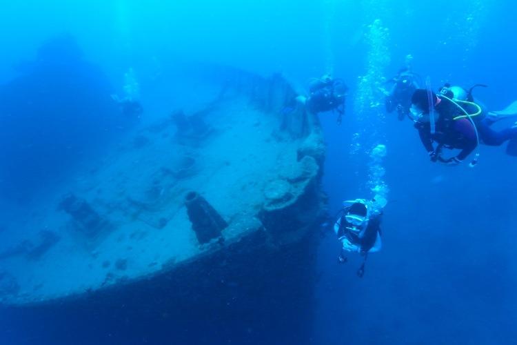 ウミガメ1ボートダイビング (体験ダイビ...の写真