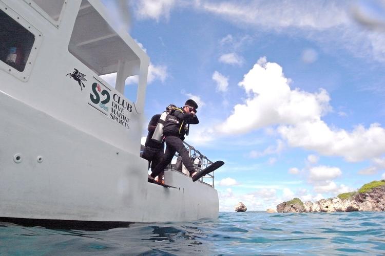 ウミガメ1ボートダイビング  [体験ダイ...の写真