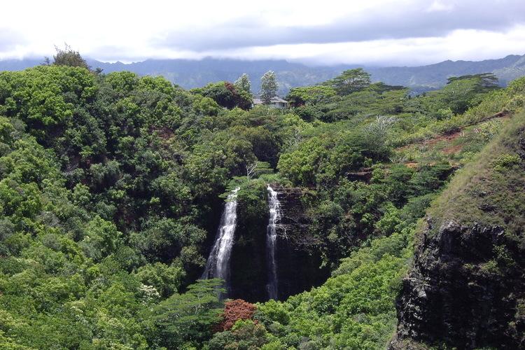 ハワイの魅力はオアフ島だけじゃない カウ...の写真