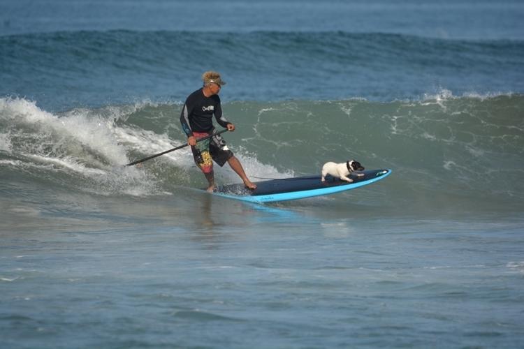 スタンドアップパドルサーフィンの写真